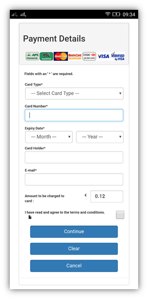 Mobile Version of Payment Page